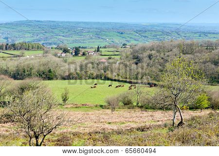 View from Black Down Mendip Hills Somerset England UK towards Blagdon lake and Chew Valley