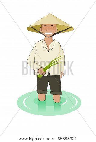 Vietnamese man of puddy field