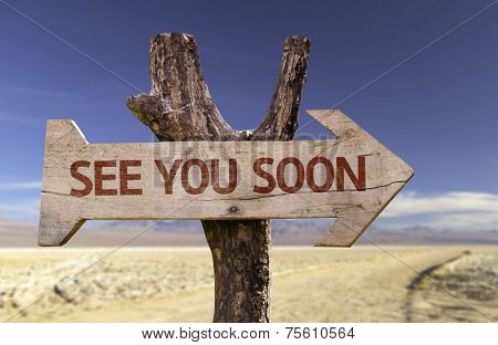 See You Soon wooden sign with a desert background