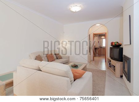 Comfortable Lounge Room Interior With Warm Colors. Typology Suite.