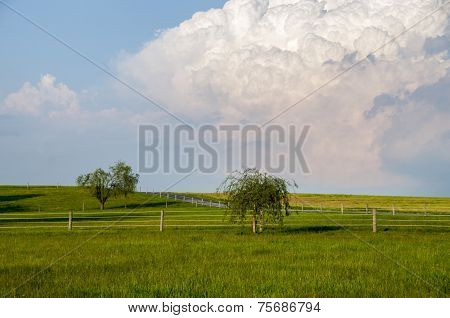 Thunderhead Over The Meadow