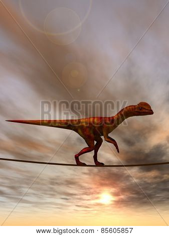 Concept or conceptual abstract business metaphor as wild heavy dinosaurus balancing on rope over sunset sky background