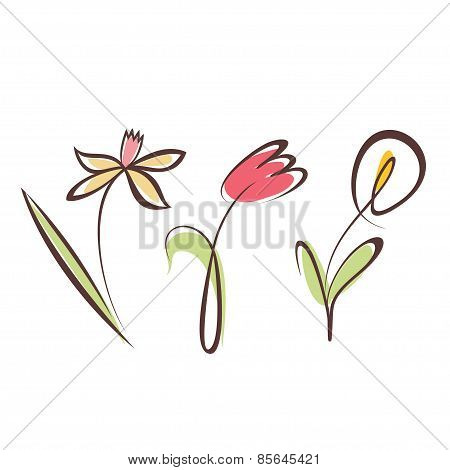 Outlined Hand Drawn Flower Collection, Design Elements Set