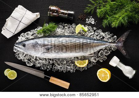 Tuna Fish And Ingredients On Ice On A Black Stone Table Top View