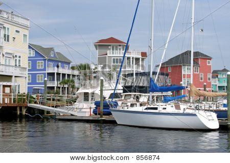 Bright Harbor