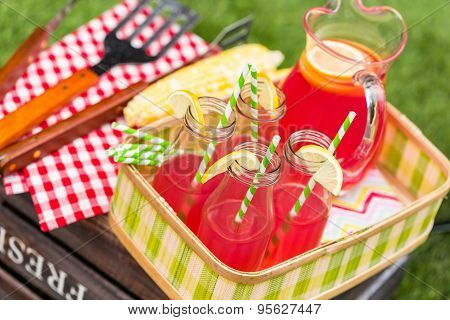Summer picnic with small charcoal grill in the park. poster