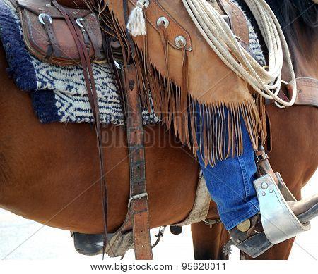 Cowboy on horse.