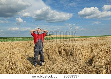 Agriculture, Farmer Gesture In Wheat Field