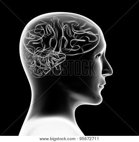 Transparent 3d head of the person and brain. Isolated on black background