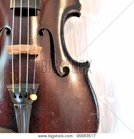 Antique Violin Closeup Against White, Square Image