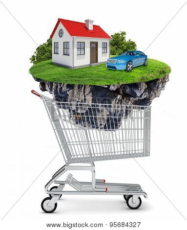 House and car in shopping cart