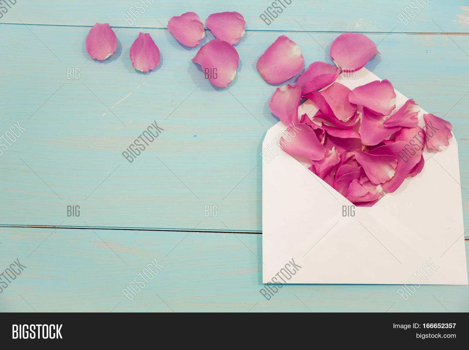 Blank white post cards image photo free trial bigstock blank white post cards empty postcard postcrossing love letter still life m4hsunfo