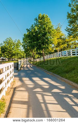 Country road surrounded the horse farms and stables with evening fence shadows.