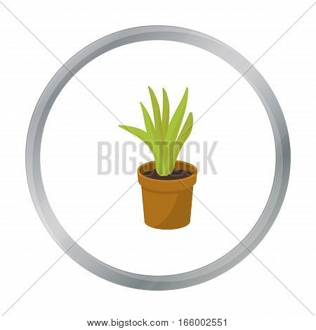 Office plant in th flowerpot icon in cartoon style isolated on white background. Office furniture and interior symbol vector illustration. - stock vector