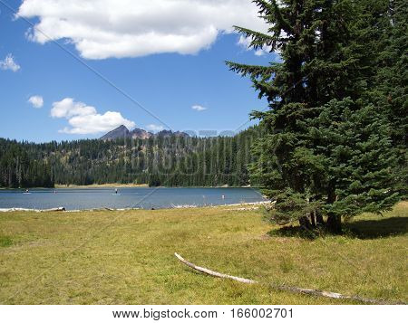 A field leading to Todd Lake with paddle boarders enjoying the summer day with Broken Top in Oregon's Cascade Mountain Range in the background.