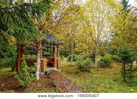 Wooden pergola in the autumn garden. Autumn leaf fall.