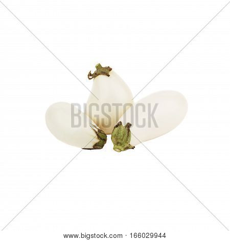 Vegetables Set: Violet Eggplants, Isolated