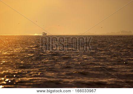 Boating At Sunrise
