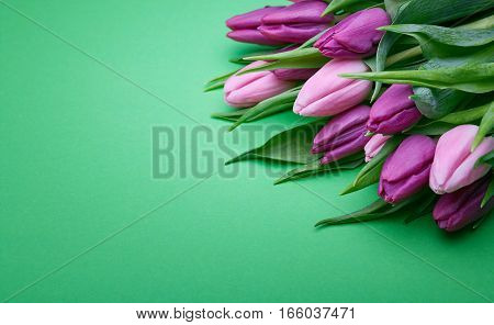 Bouquet of beautiful flowers, buds of spring tulips, flowers on a green background, holiday items for congratulations