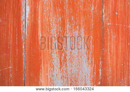 Wood door coating started disengaging coasted see primer coat.