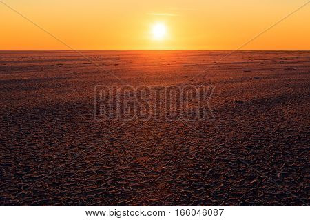 Low the sun over a sea ice field