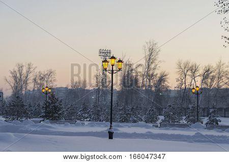 Evening municipal park. Included lantern. Winter fairy-tale