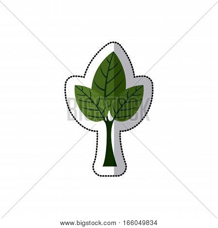sticker tree with leafy branches vector illustration