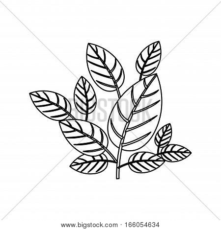 silhouette ornament leaves with ramifications vector illustration