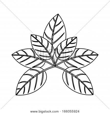 silhouette of leaves with ramifications vector illustration