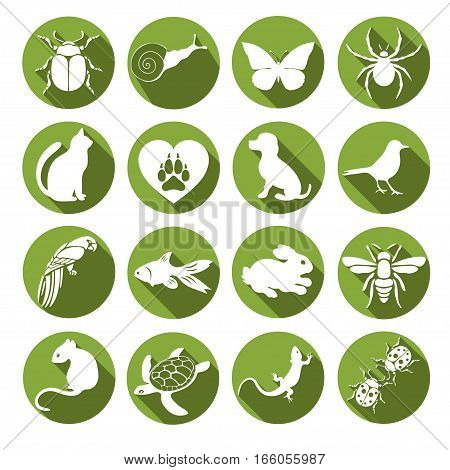 Vector Set Flat Web Icons Animals And Insects. White  With Long Shadow In Round Green Frame For Inte