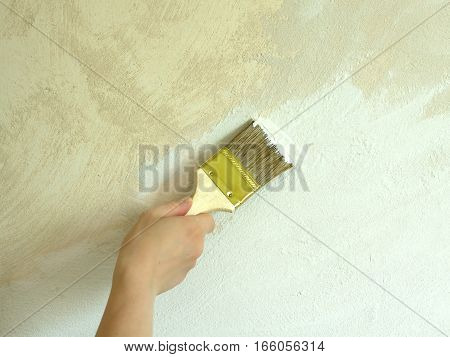 Woman's hand holds brush and paint wall repair
