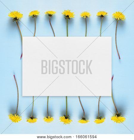 Dandelions and blank greeting card on blue background