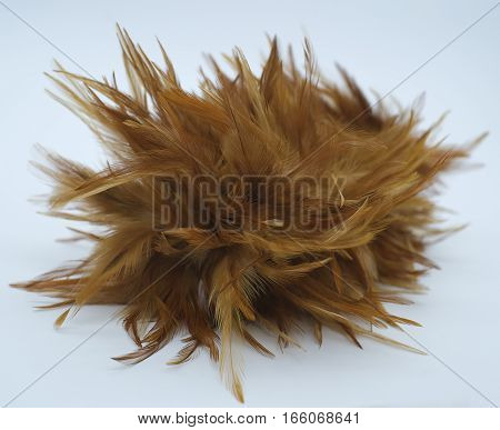 feather broom isolated on white colour background