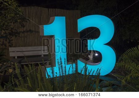 Decorative Led Light Sign With The Number 13