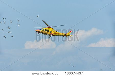 Udine- Italy 13 April 2013 :Emergency medical helicopter life flight crosses a flock of birds