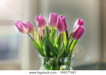 Violet Tulips In A Glass Vase
