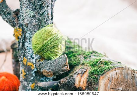 Red and green wool clews on natural mossed logs. Closeup view