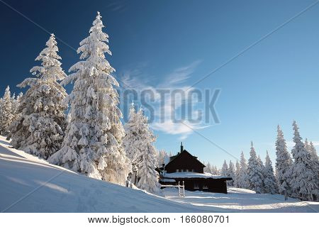 Cottage in the mountains surrounded by winter scenery.