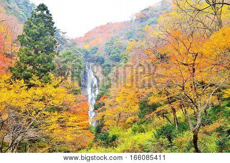 Kanba waterfall and autumn colors in Okayama Japan