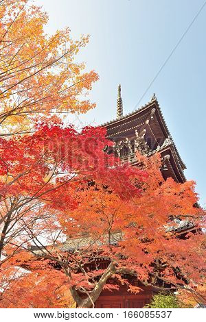 Maple leaves and pagoda at Shinnyodo temple in Kyoto Japan