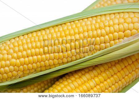 Young juicy ripe raw corn on the cob close-up lying on green leaves on a white background. Collect corn crop. The concept of healthy eating.