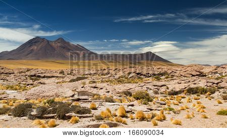 Saucer clouds in the Atacama desert Chile