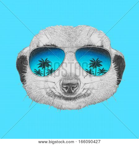 Portrait of Meerkat with mirror sunglasses. Hand drawn illustration.