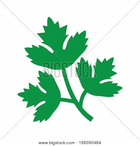 Parsley icon. Vector Illustration on the white background.