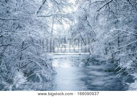 Winter landscape with snow covered trees and ducks in the lake
