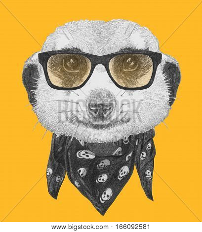 Portrait of Meerkat with glasses and scarf. Hand drawn illustration.
