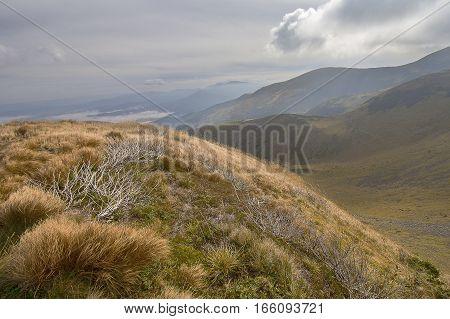 Autumn panoramic view of the mountains. Carpathians