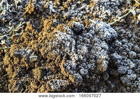 The Soil And Snow. Frozen Ground. Background Of The Soil And Snow