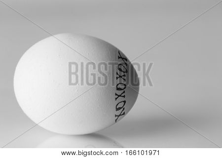 Close up of a chicken egg decorated with black xoxo hugs and kisses with directional light shadows and copy space.