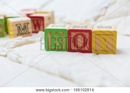 Wooden Alphabet Blocks On Quilt Spelling Boy Angled